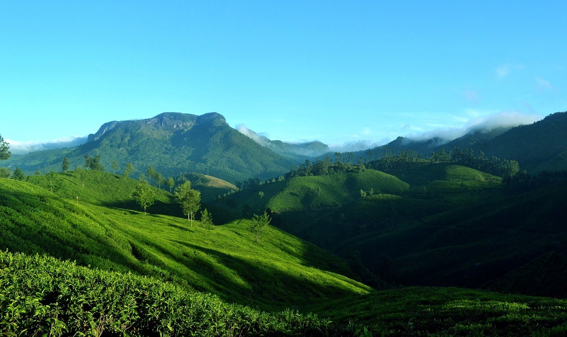 Munnar is one of the Best Places to visit in the Summer in India