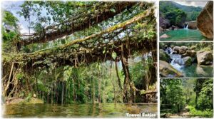 Double Decker Living Root Bridge – An Awesome Trekking Experience into the Forest of Cherrapunji