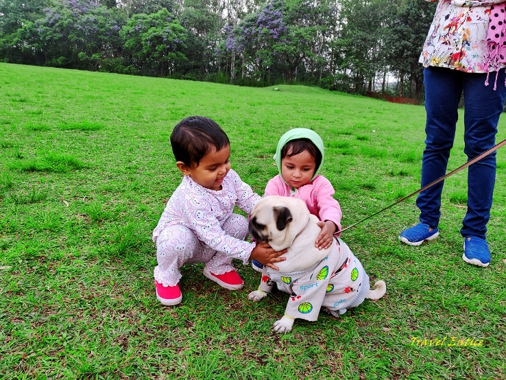 Best places to visit in Shillong - at Golf course with dog 3