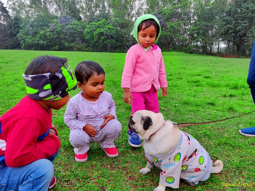 Best places to visit in Shillong - at Golf course with dog