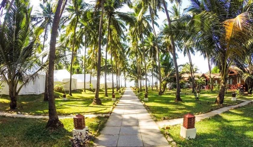 Best Resorts in Ashvem - La Cabana