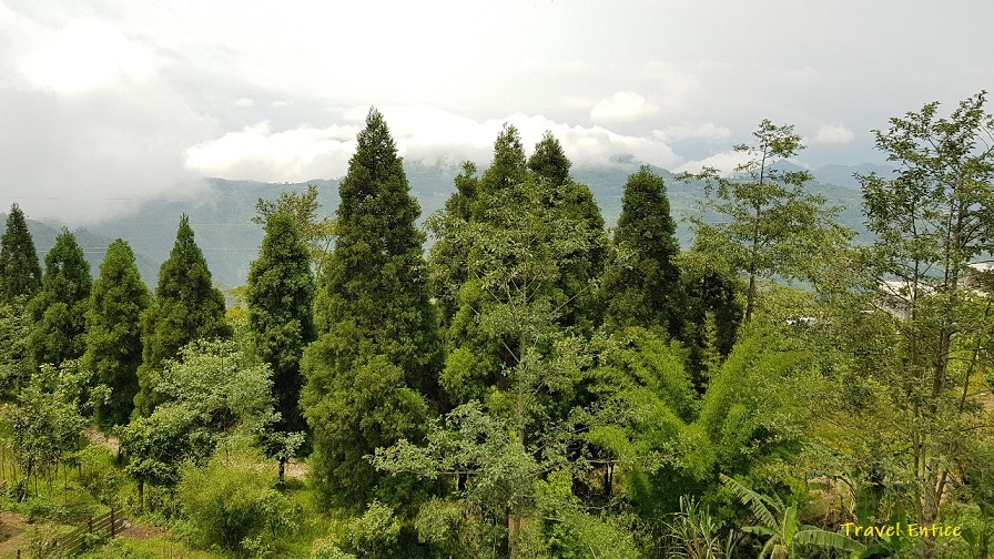 Read more about the article Bagora near Kurseong: A Perfect Destination for Peaceful Weekends