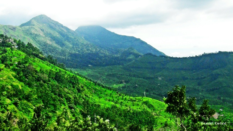 Munnar Tourist Places - 12 Best Places to Visit in Munnar Hill Station India 4.