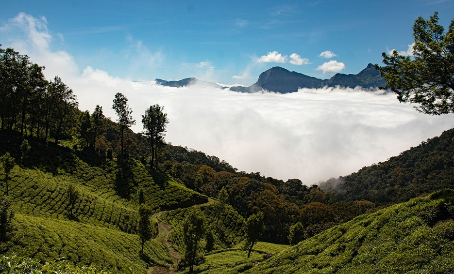 Munnar Tourist Places - 12 Best Places to Visit in Munnar Hill Station India - top station