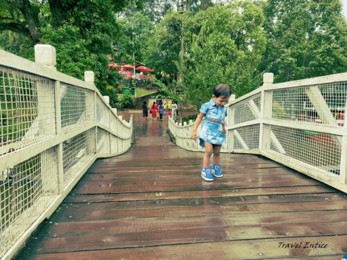 Best places to visit in Shillong - Wards Lake 7