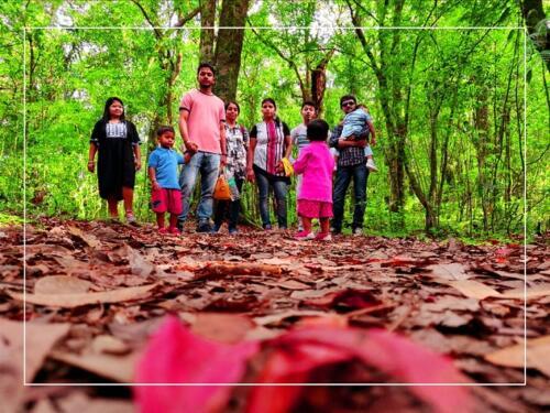 Mawphlang Sacred Forest inside