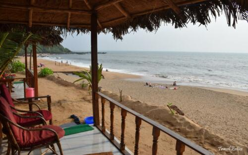 Cola beach in Goa-14